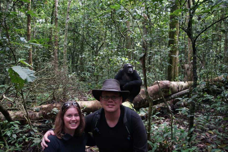 Chimpanzee Trekking at Kibale National Forest