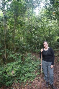 Hiking Stick for Chimp Trekking in Kyambura Gorge