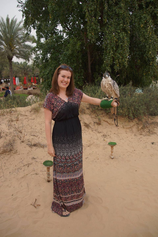 Falcon at Bab al Shams