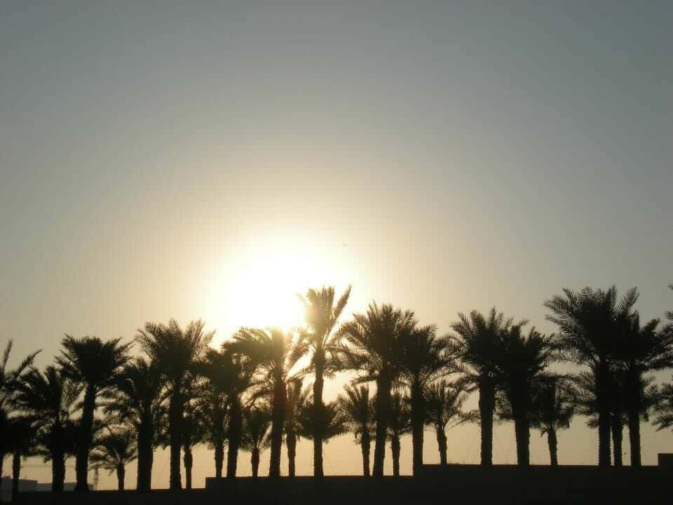 The Best place to see sunset in Doha