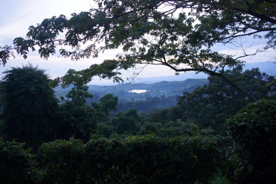 Ndali Lodge Review – Luxury in the Rwenzori Mountains