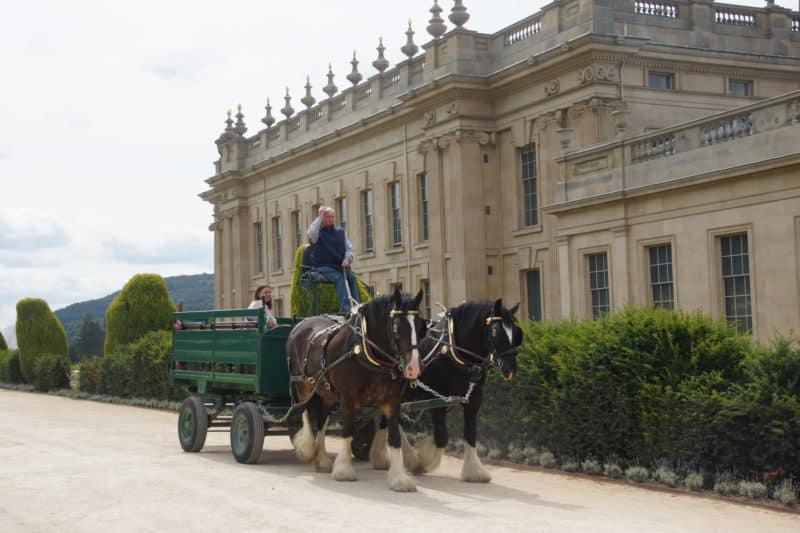 Horse Drawn Carriage Chatsworth