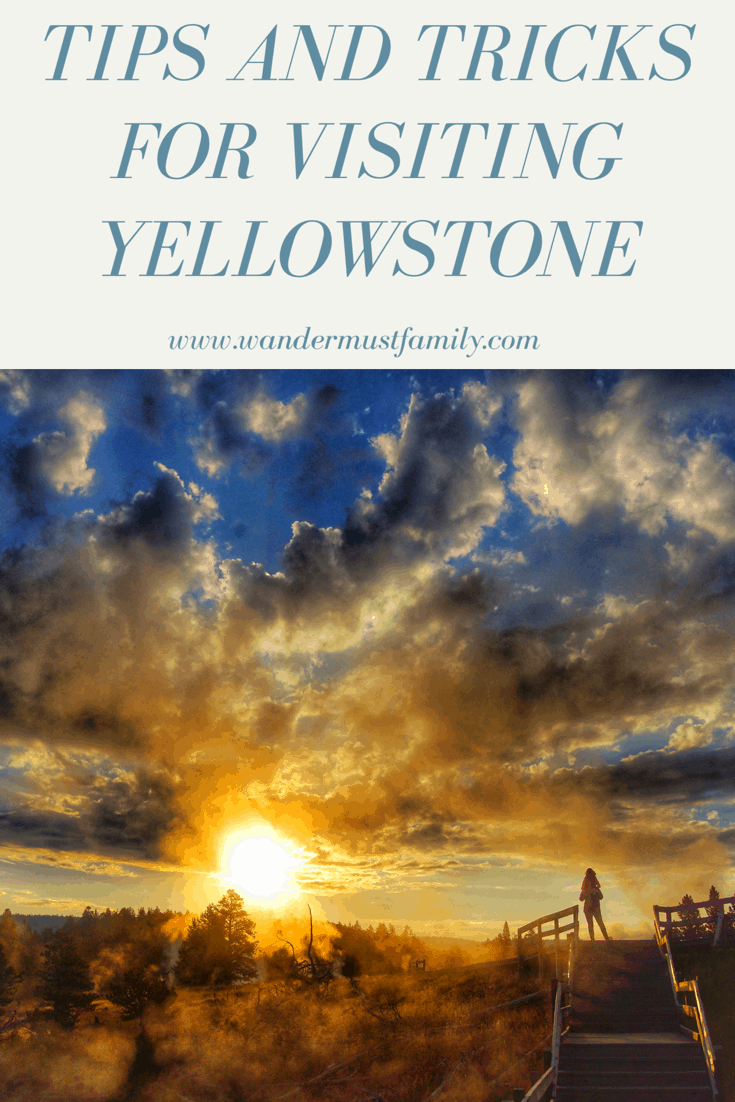 The best tips and tricks Yellowstone for planning your trip to Yellowstone National Park #wandermustfamily