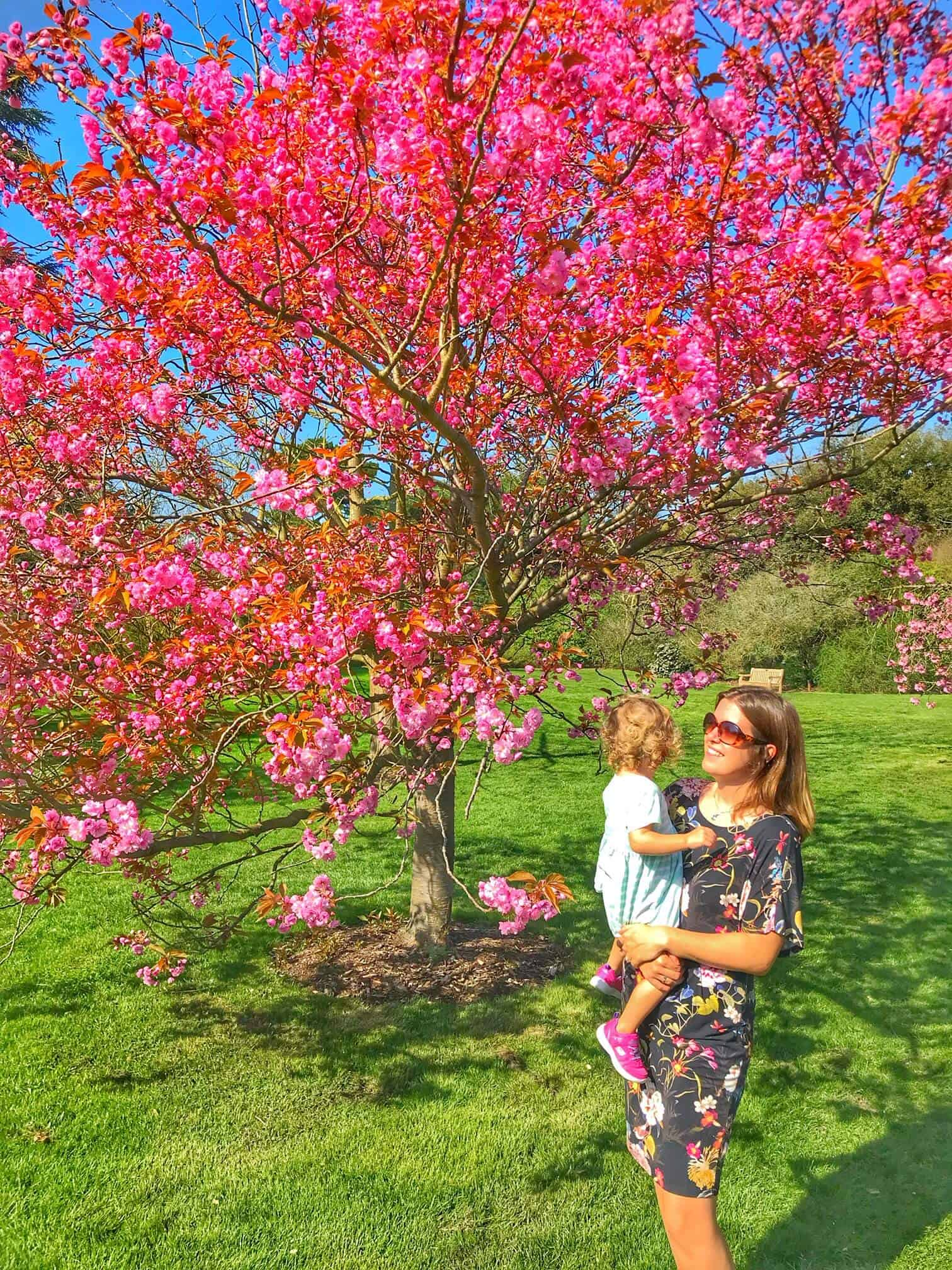 Kew Gardens with Kids - Perfect London day trip with kids