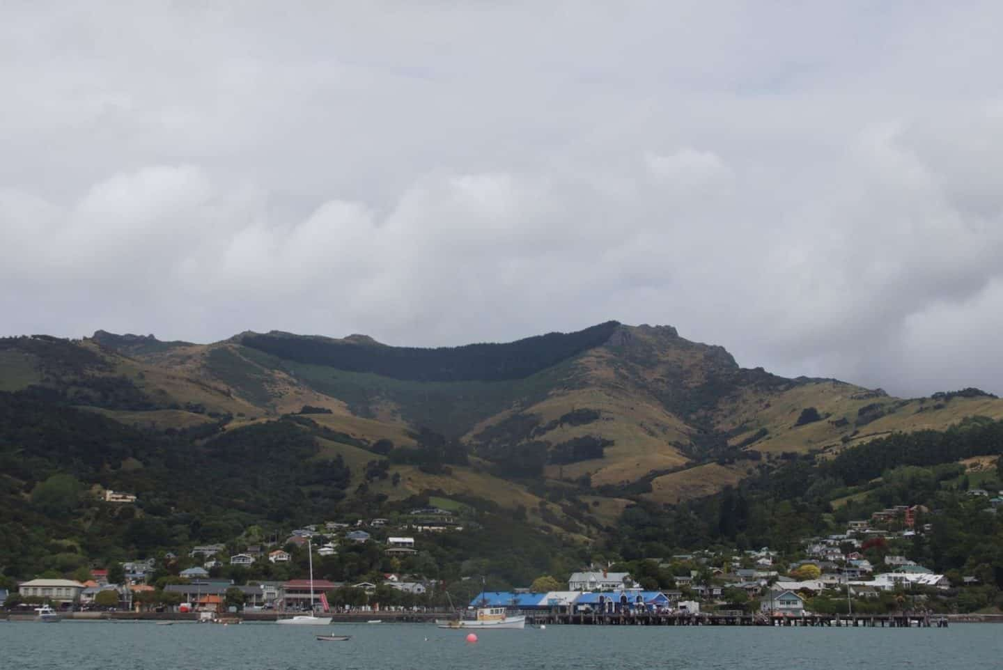 Best things to do in Akaroa, New Zealand – a day trip from Christchurch