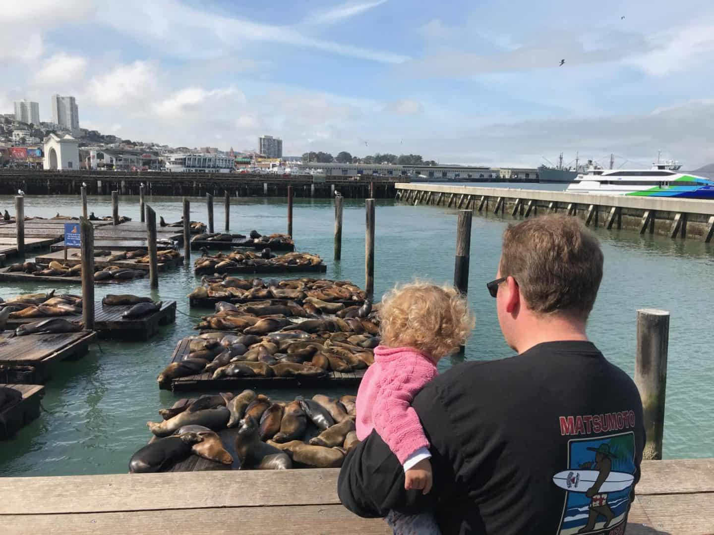Best Things to do in San Francisco with toddler in tow