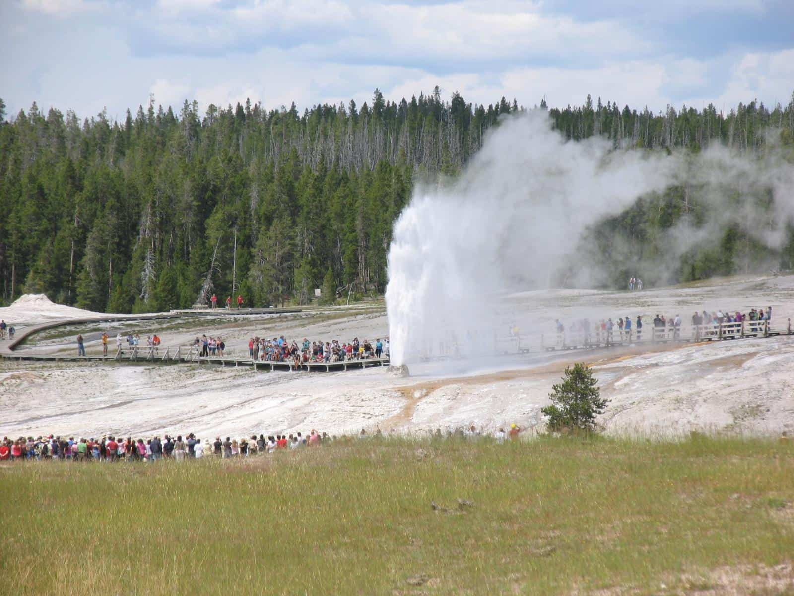 Best Geysers in Yellowstone - The Beehive Geyser