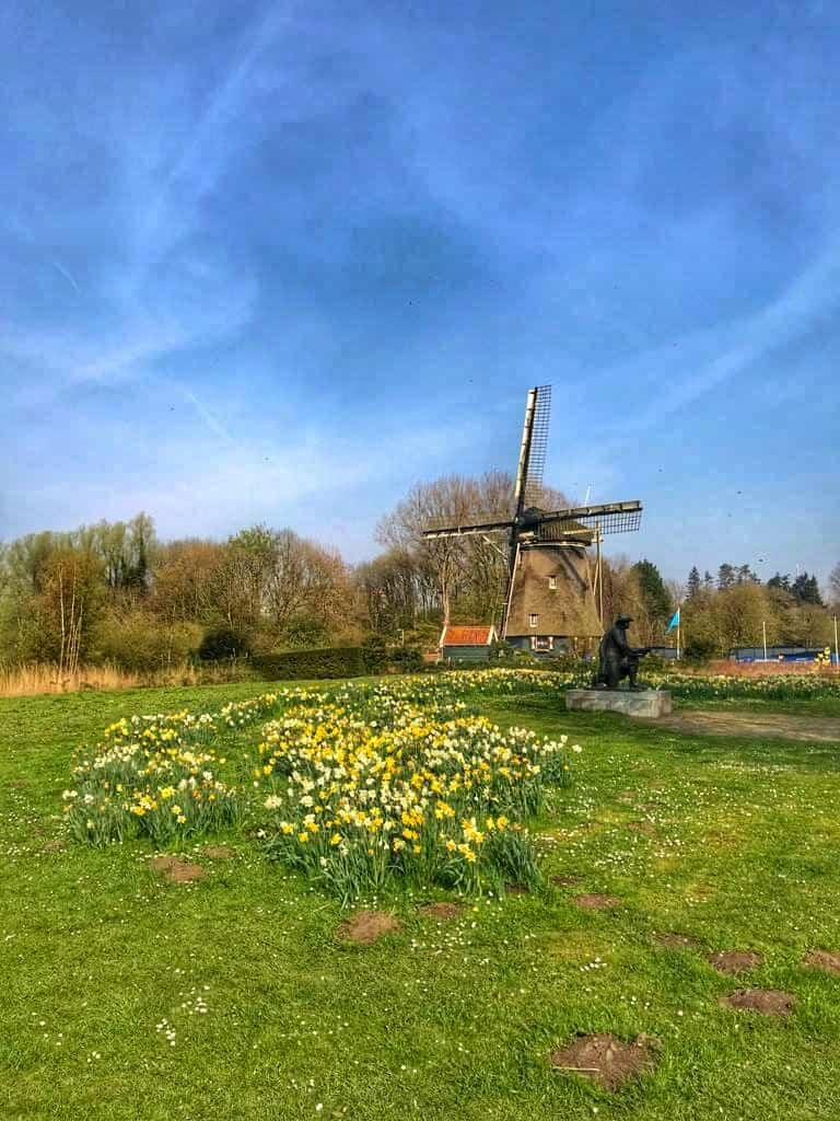 Finding Windmills in Amsterdam - a great free activity in Amsterdam