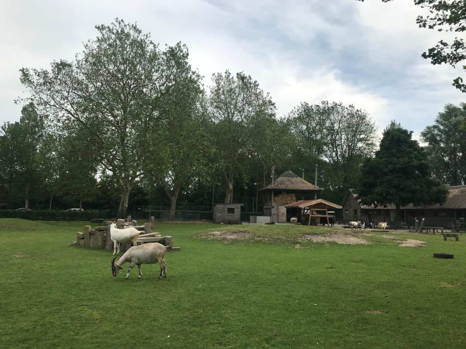 Amstel Park - one of the best free things to do in Amsterdam with kids