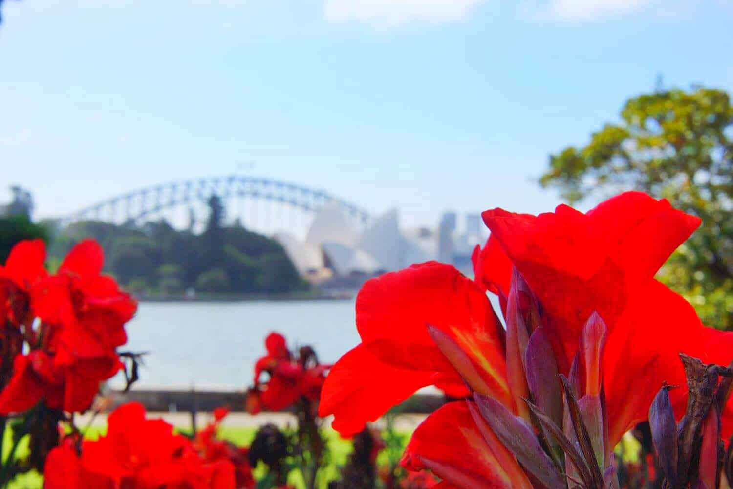 Ultimate 5 day in Sydney itinerary - best views of Sydney Opera House