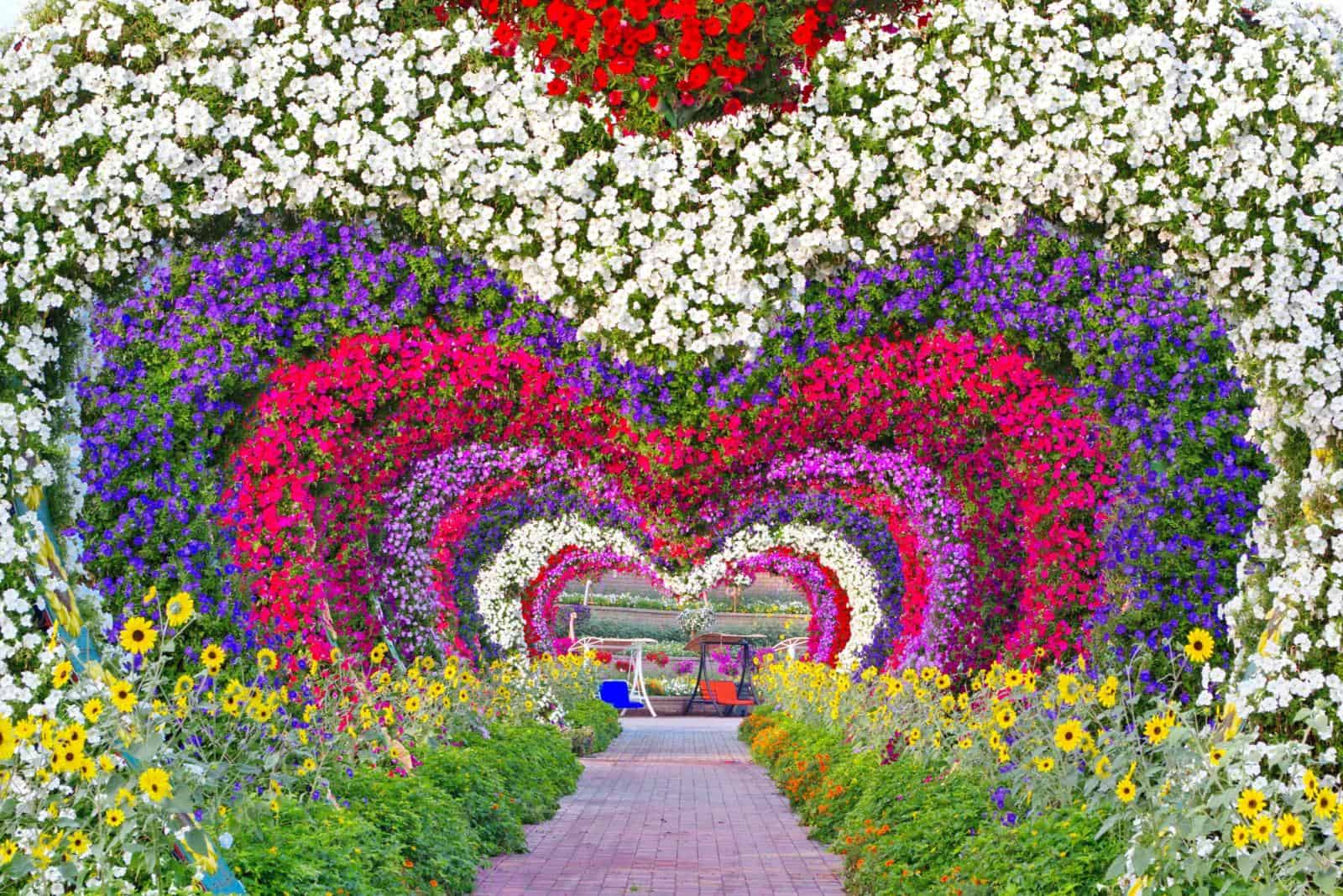 Miracle Garden Dubai - one of the Best things to do in Dubai - travelling to dubai while pregnant