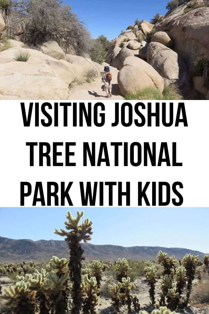 visiting Joshua Tree National Park with kids including family friendly hikes