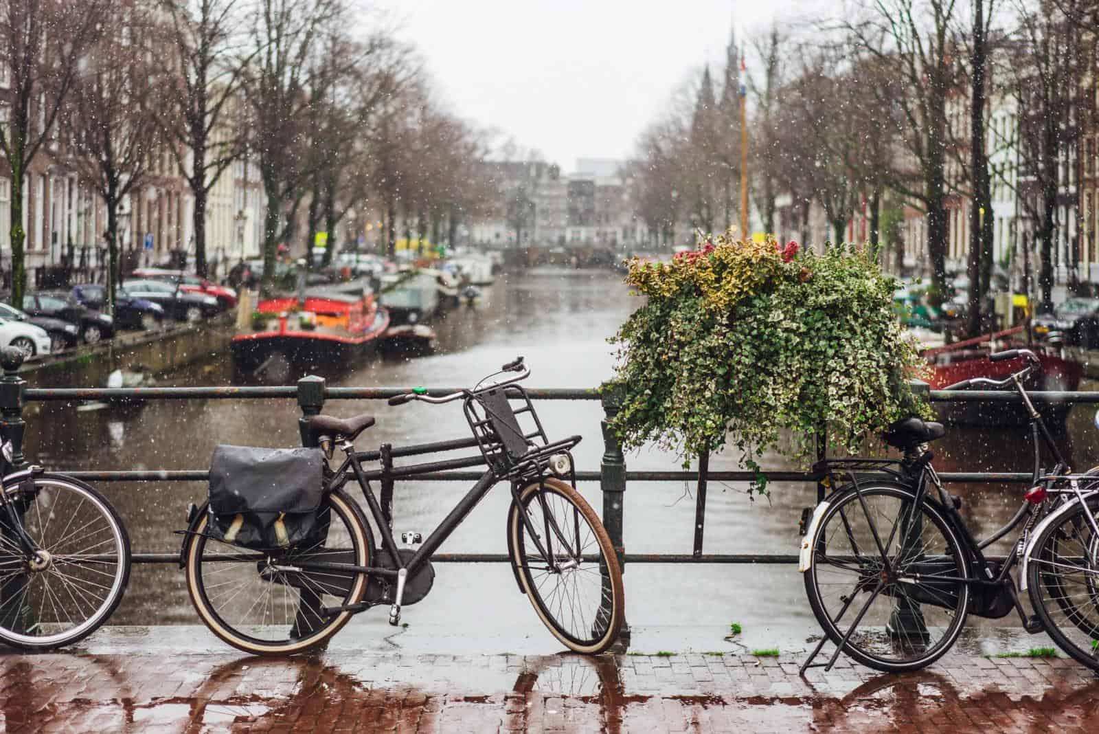 Best Things to do in Amsterdam in the rain / What to do on a rainy day in Amsterdam